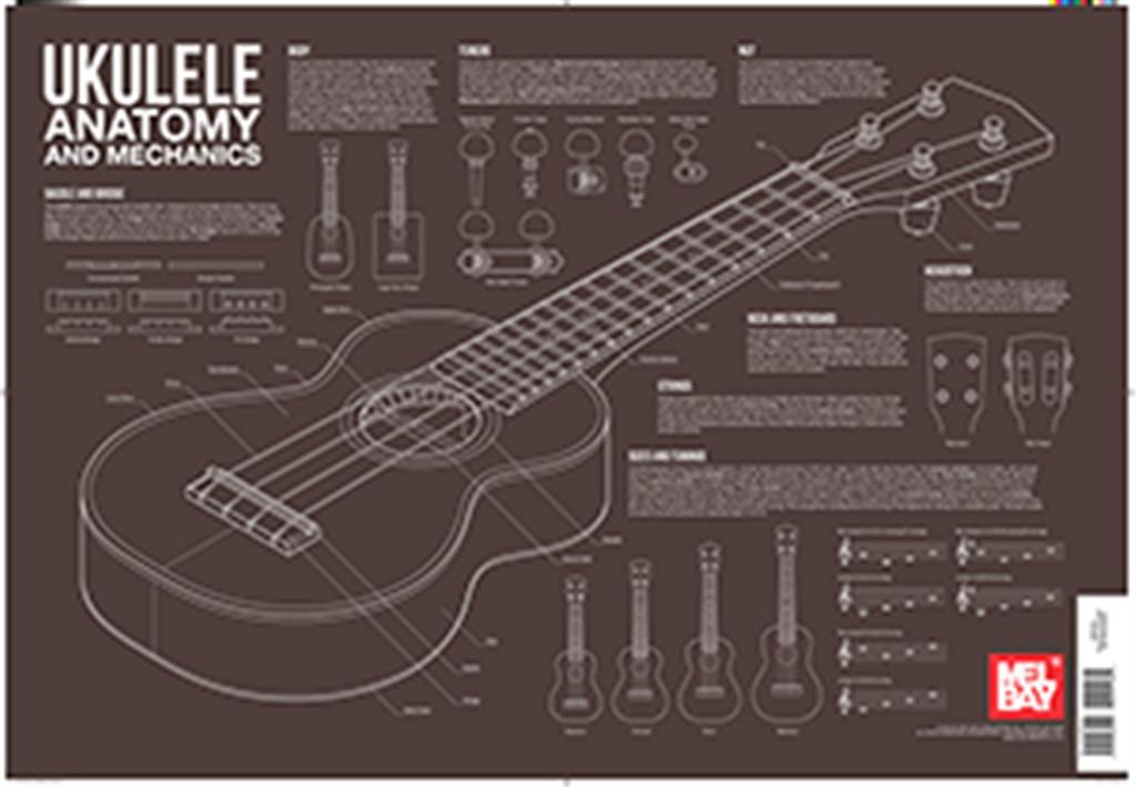 Ukulele Anatomy and Mechanics   West Music