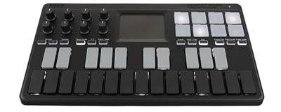 Korg NANOKEYST Mobile 25-Key MIDI Keyboard